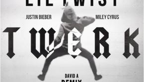miley-cyrus-twerk-davida-remix