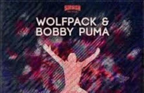 Wolfpack-Bobby-Puma-Jump-Original-Mix