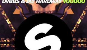 dvbbs-jay-hardway